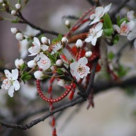 Пролетта почти е тук