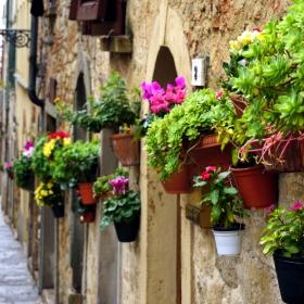 Уличка в Тоскана, Сиена