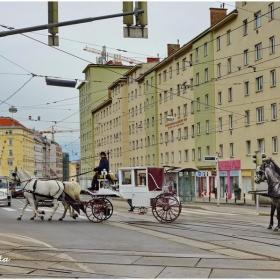 На път към работното място. Виена в една снимка.