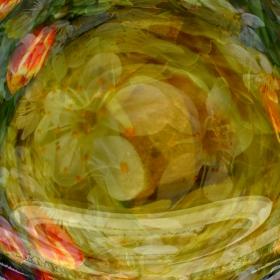 Кристалната топка: пролетно тайнство