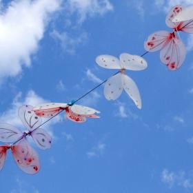 Пеперуди в небето