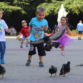 Деца и гълъби
