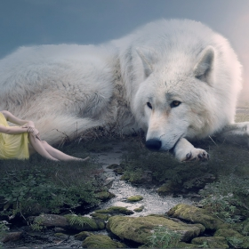 Elen  and the white wolf