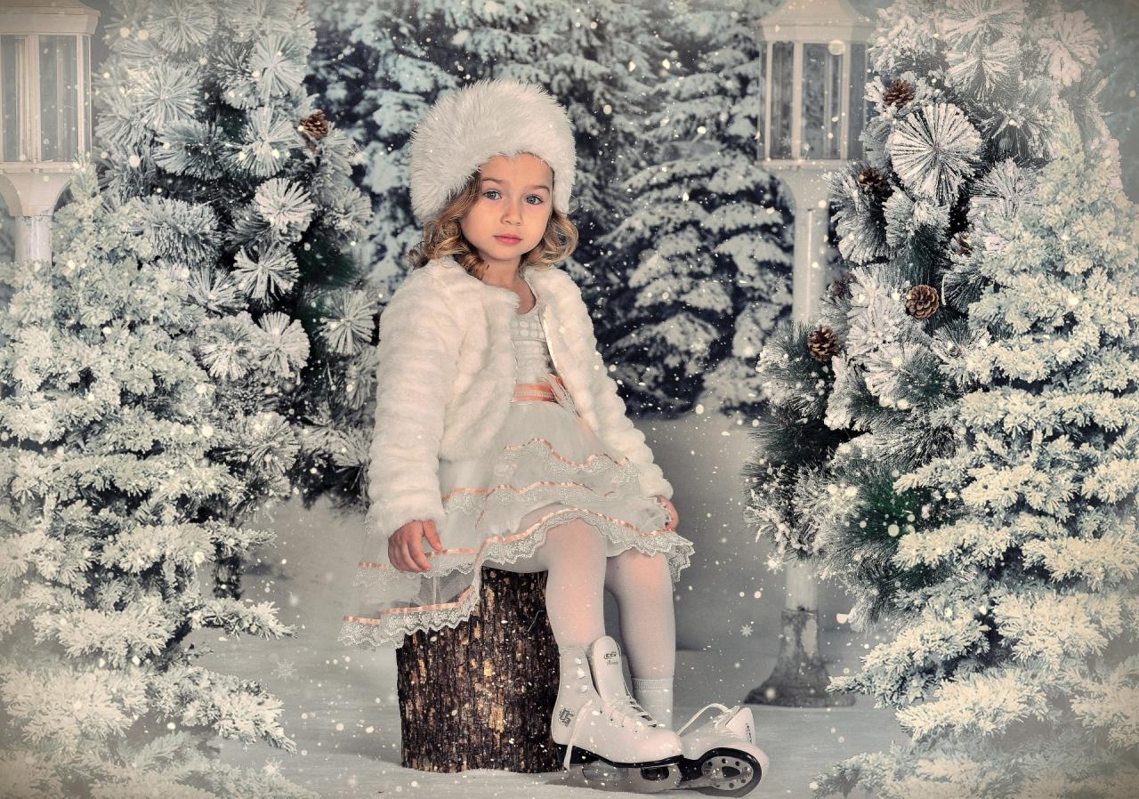 Зимна мечта