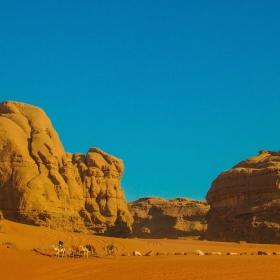 През пустинята