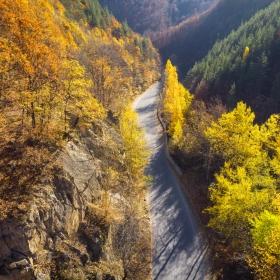 Есенна картина