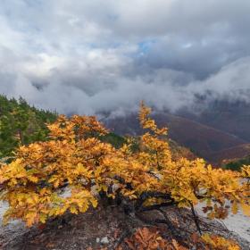 Есенно на Белинташ