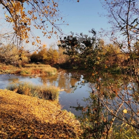 Тази есен продължава