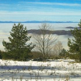 Софийска мъгла - Високо в планината над мъглите