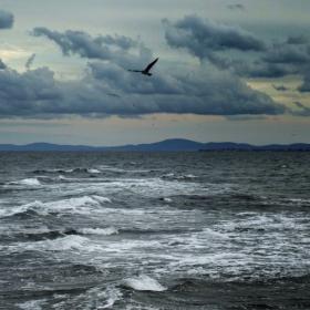Сърдито море