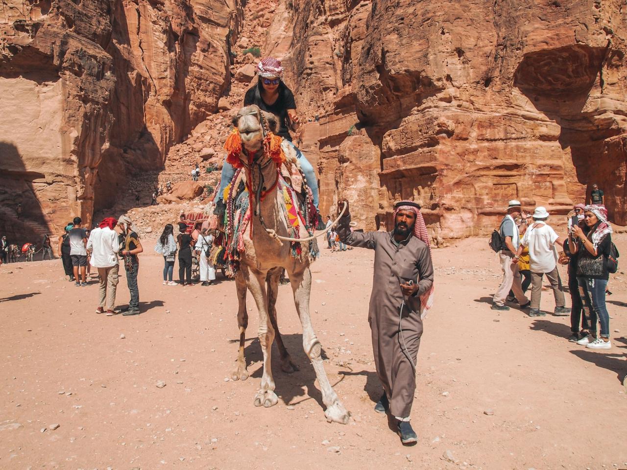 Пътешествие с камила