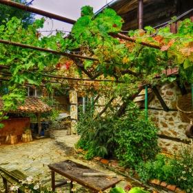 Двор в странджанското село Бръшлян