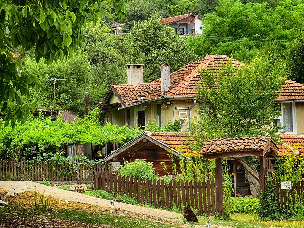 Из село Бръшлян