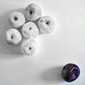 Мajority...the black apple 2